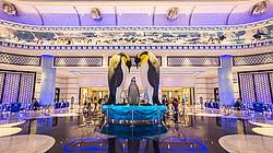 长隆海洋王国 企鹅酒店一价全包